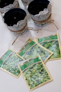 herb seed packets