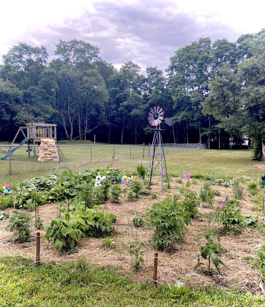 windmill and organic gardening for beginners