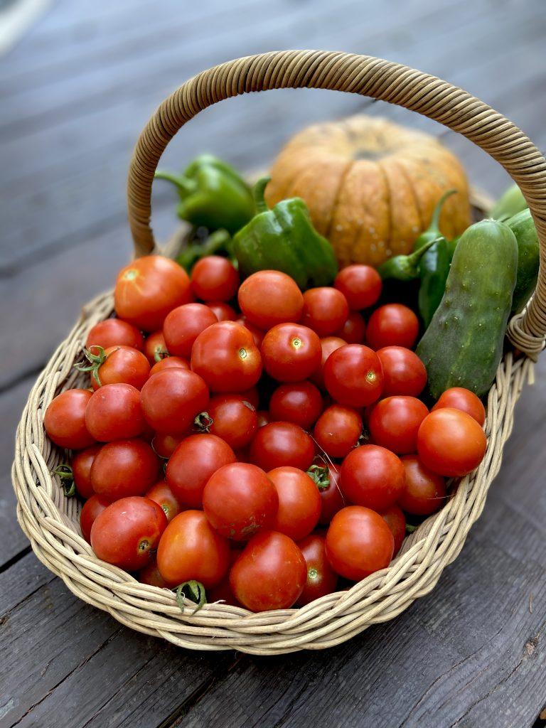 basket of organic produce at Riggs Creek Farmhouse