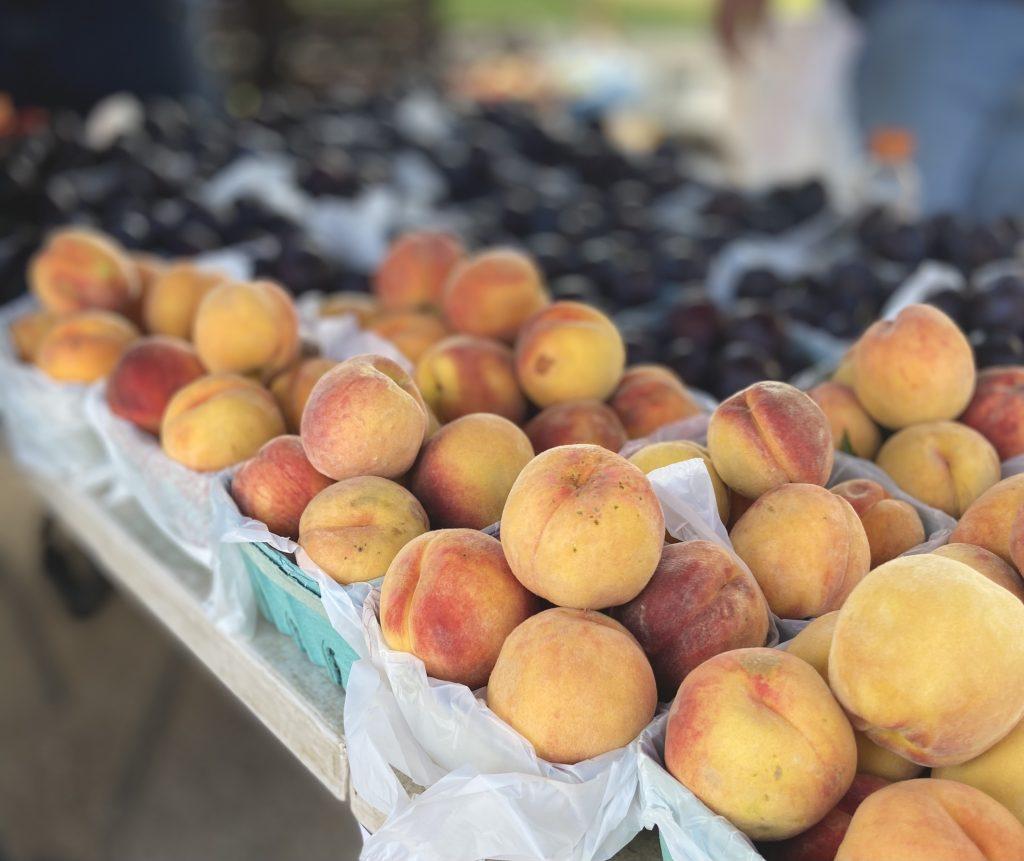 peach and plum harvest at Riggs Creek Farmhouse