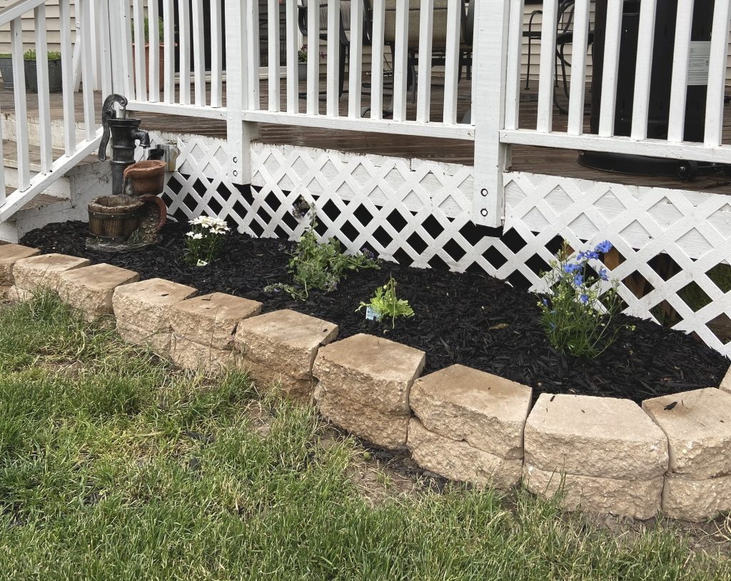 DIY landscaping for beginners