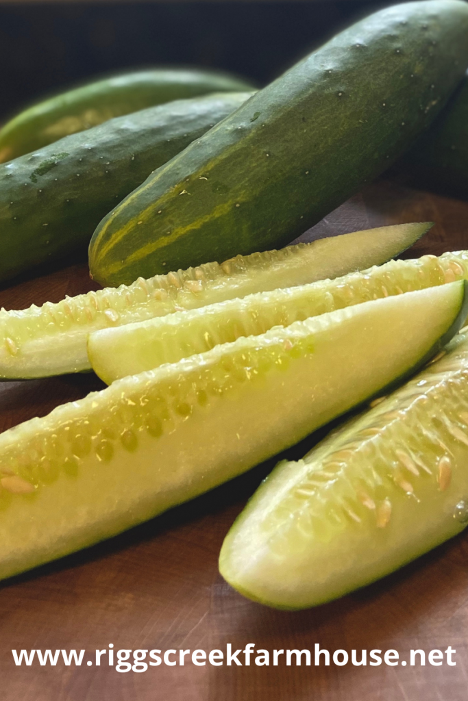 Homemade Fermented Dill Pickle
