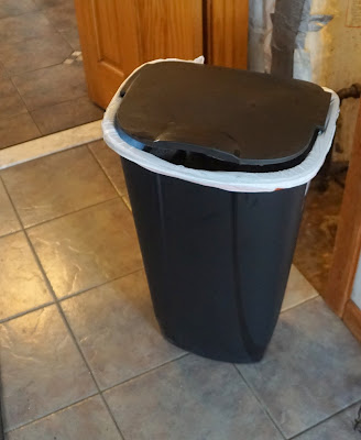 use peppermint essential oil in garbage cans